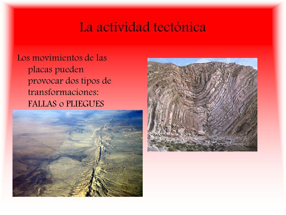 La actividad tectónica Los movimientos de las placas pueden provocar dos tipos de transformaciones: FALLAS o PLIEGUES