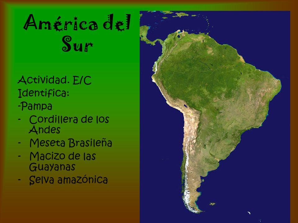 América del Sur Actividad. E/C Identifica: -Pampa -Cordillera de los Andes -Meseta Brasileña -Macizo de las Guayanas -Selva amazónica