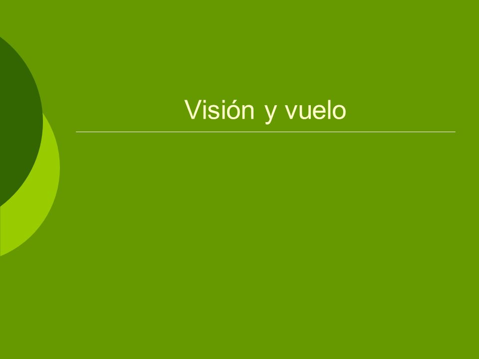 2 Introducción La vista es el sentido más importante para el vuelo Es el sentido que informa al piloto de su posición en el espacio