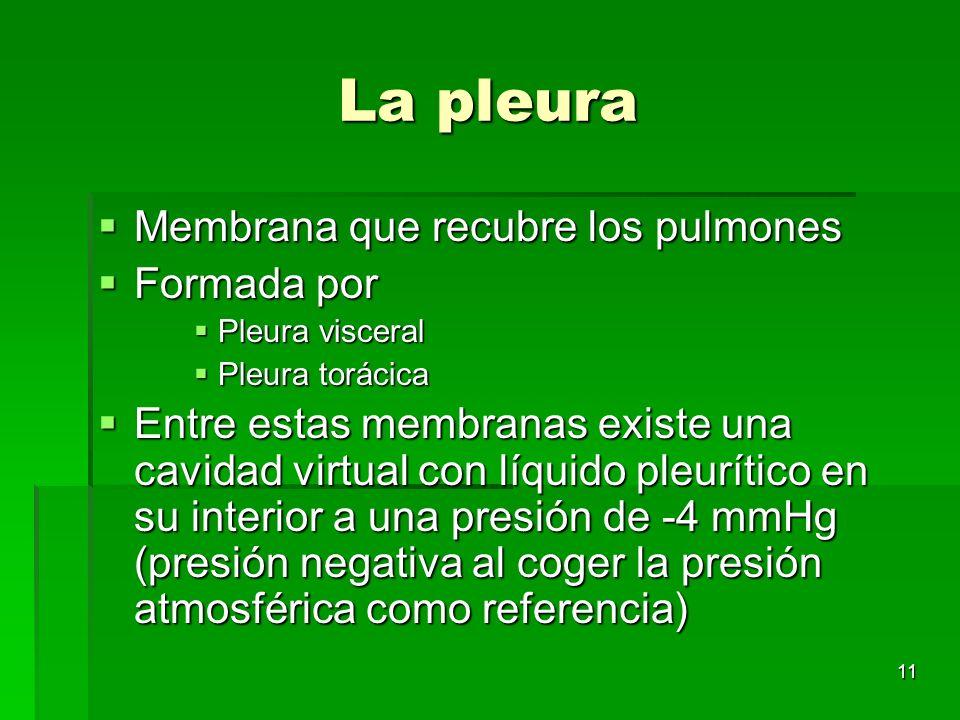 11 La pleura Membrana que recubre los pulmones Membrana que recubre los pulmones Formada por Formada por Pleura visceral Pleura visceral Pleura toráci