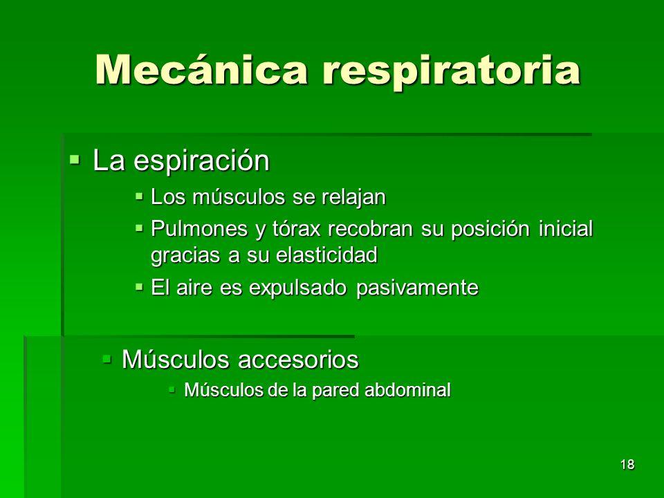 18 Mecánica respiratoria La espiración La espiración Los músculos se relajan Los músculos se relajan Pulmones y tórax recobran su posición inicial gra