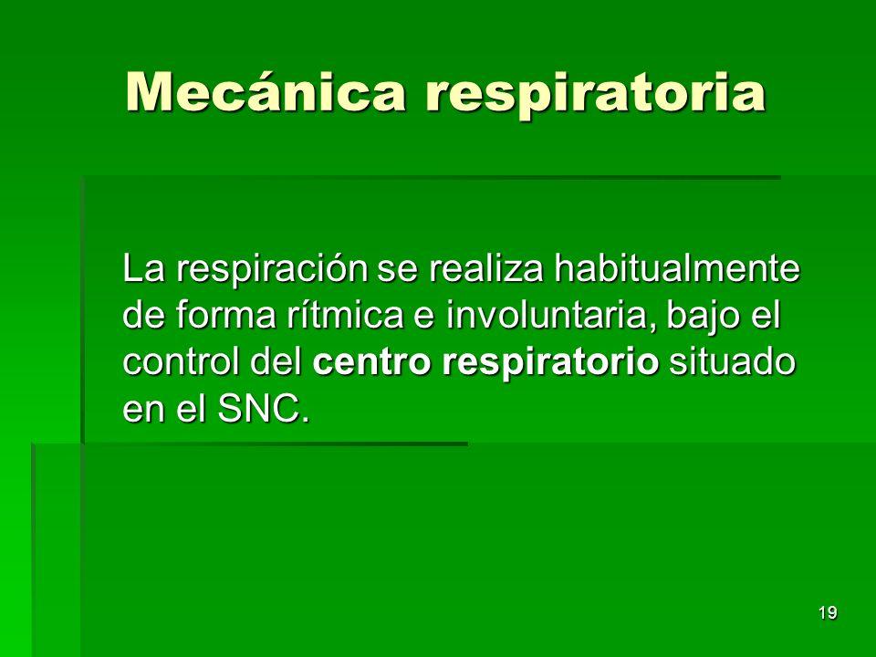 19 Mecánica respiratoria La respiración se realiza habitualmente de forma rítmica e involuntaria, bajo el control del centro respiratorio situado en e
