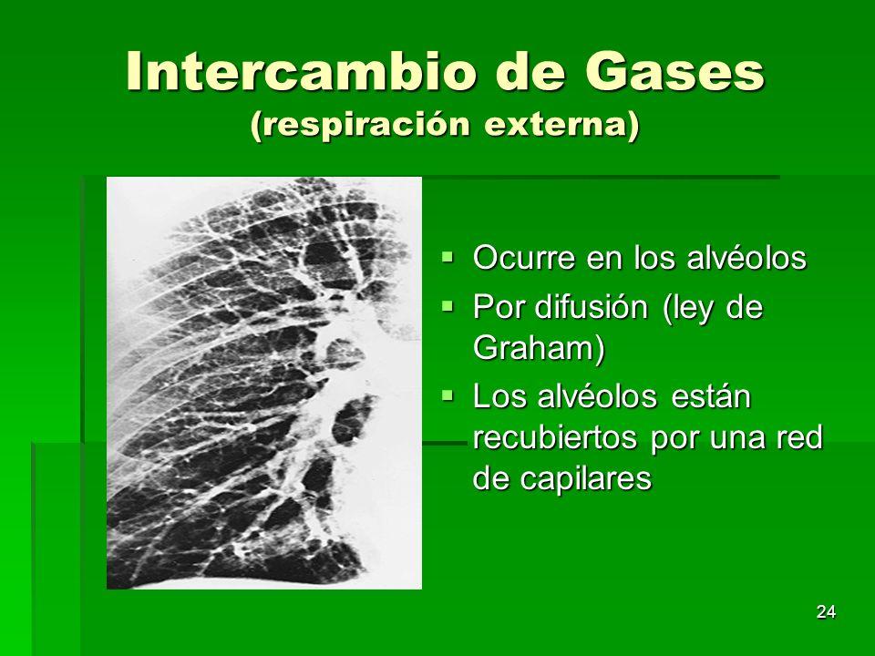24 Intercambio de Gases (respiración externa) Ocurre en los alvéolos Ocurre en los alvéolos Por difusión (ley de Graham) Por difusión (ley de Graham)
