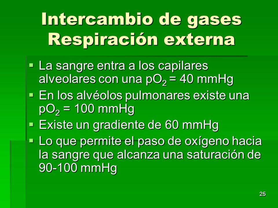 25 Intercambio de gases Respiración externa La sangre entra a los capilares alveolares con una pO 2 = 40 mmHg La sangre entra a los capilares alveolar
