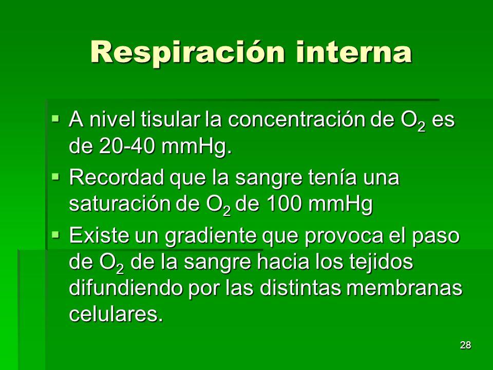 28 Respiración interna A nivel tisular la concentración de O 2 es de 20-40 mmHg. A nivel tisular la concentración de O 2 es de 20-40 mmHg. Recordad qu