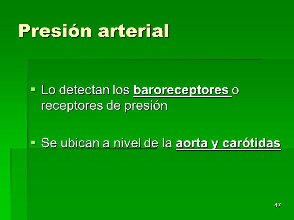 47 Presión arterial Lo detectan los baroreceptores o receptores de presión Lo detectan los baroreceptores o receptores de presión Se ubican a nivel de