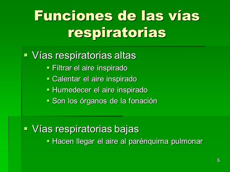 5 Funciones de las vías respiratorias Vías respiratorias altas Vías respiratorias altas Filtrar el aire inspirado Filtrar el aire inspirado Calentar e
