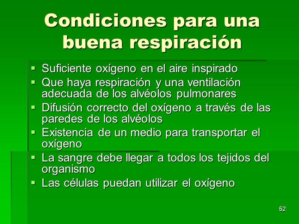 52 Condiciones para una buena respiración Suficiente oxígeno en el aire inspirado Suficiente oxígeno en el aire inspirado Que haya respiración y una v