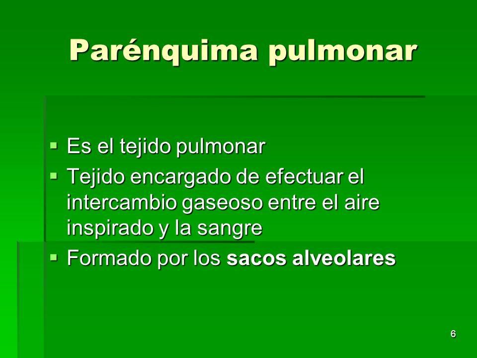 6 Parénquima pulmonar Es el tejido pulmonar Es el tejido pulmonar Tejido encargado de efectuar el intercambio gaseoso entre el aire inspirado y la san