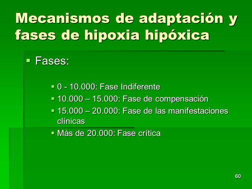 60 Mecanismos de adaptación y fases de hipoxia hipóxica Fases: Fases: 0 - 10.000: Fase Indiferente 0 - 10.000: Fase Indiferente 10.000 – 15.000: Fase