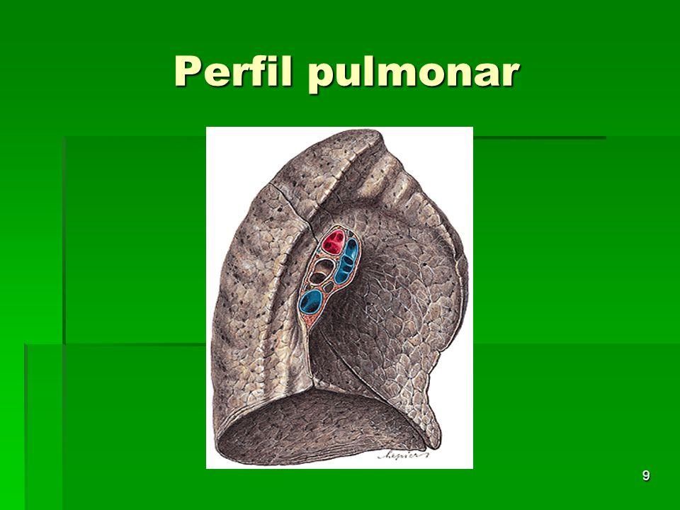 9 Perfil pulmonar