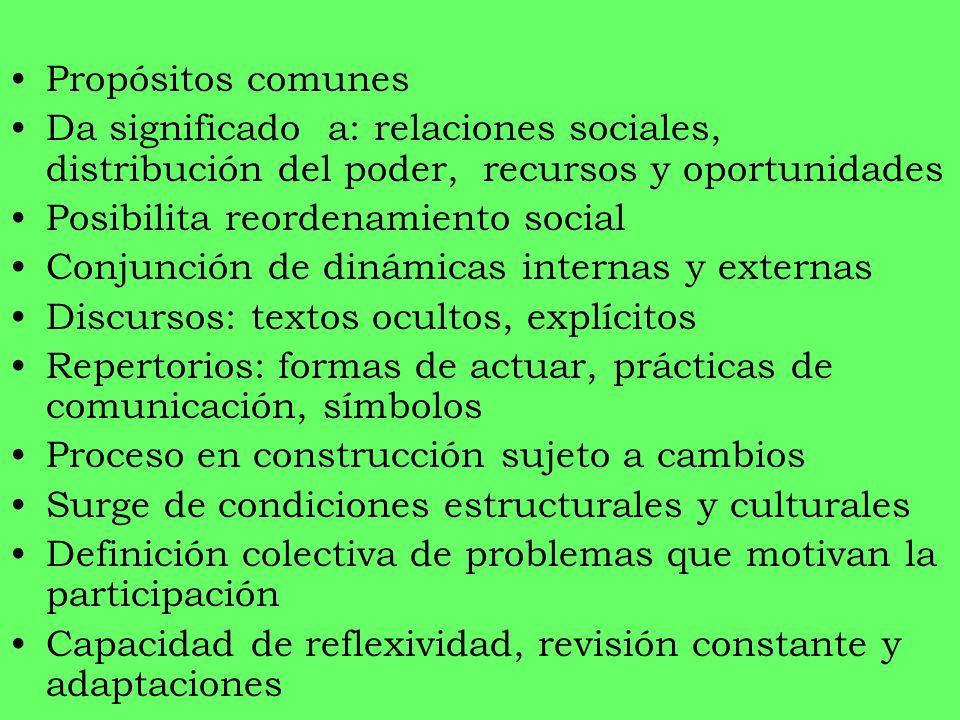 Propósitos comunes Da significado a: relaciones sociales, distribución del poder, recursos y oportunidades Posibilita reordenamiento social Conjunción
