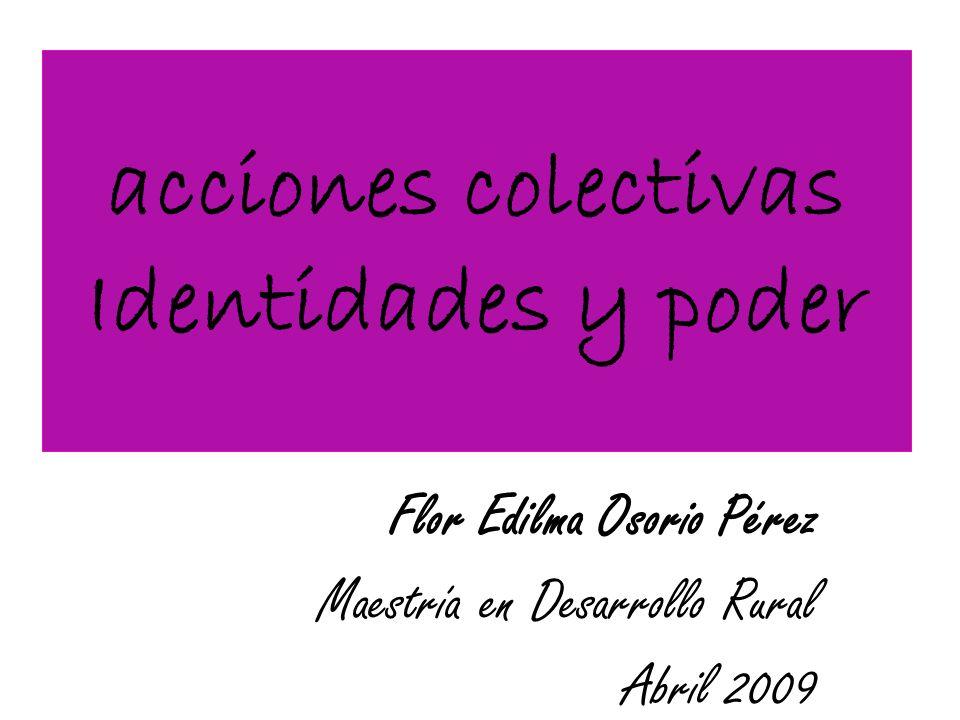 acciones colectivas Identidades y poder Flor Edilma Osorio Pérez Maestría en Desarrollo Rural Abril 2009