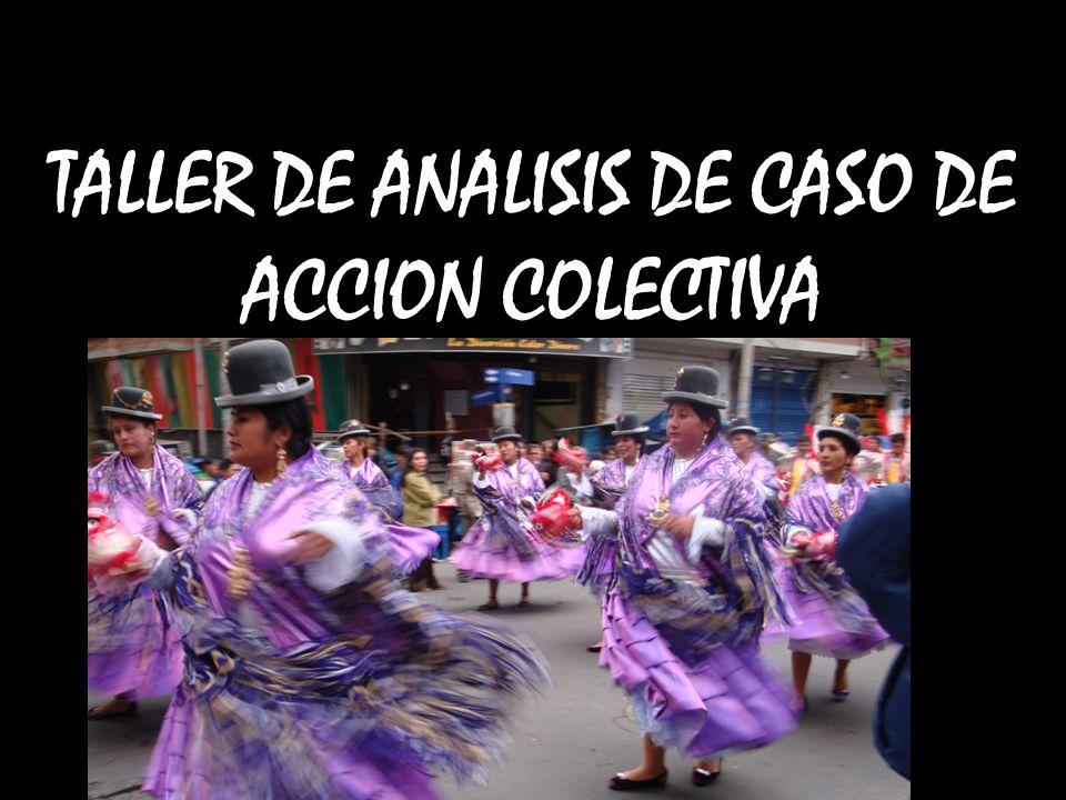 TALLER DE ANALISIS DE CASO DE ACCION COLECTIVA PROBLEMAS RURALES