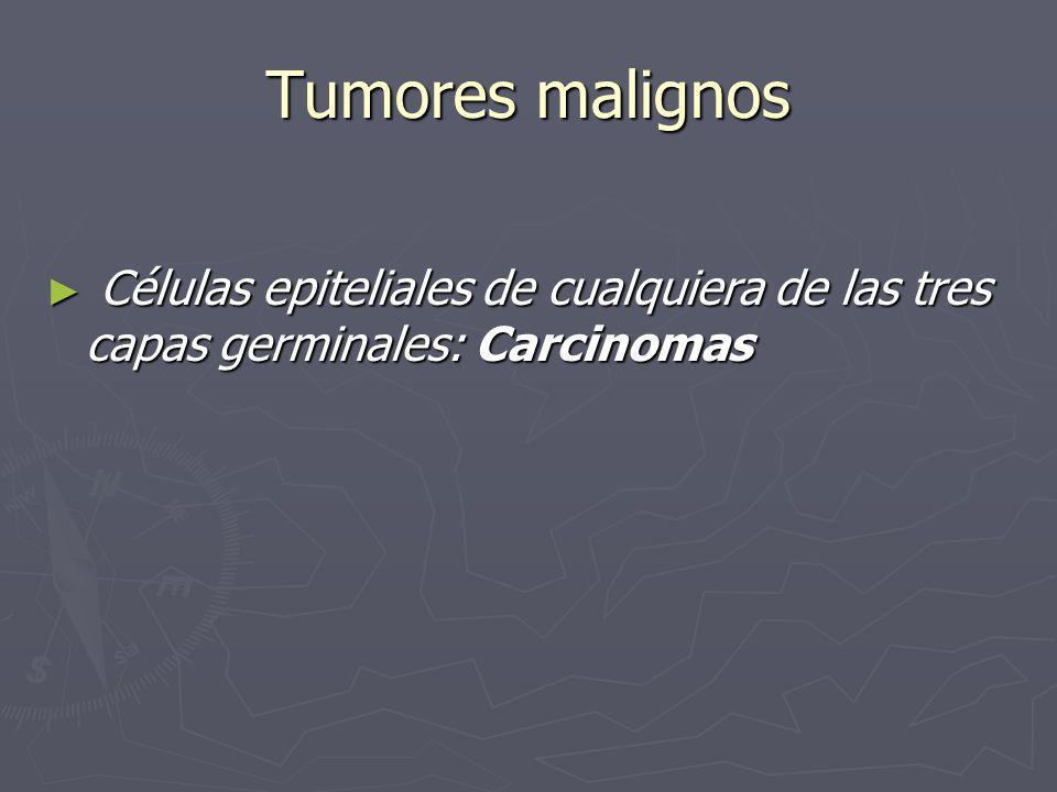 Tumores malignos Células epiteliales de cualquiera de las tres capas germinales: Carcinomas Células epiteliales de cualquiera de las tres capas germin