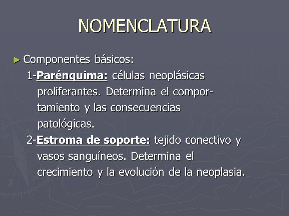 NOMENCLATURA Componentes básicos: Componentes básicos: 1-Parénquima: células neoplásicas 1-Parénquima: células neoplásicas proliferantes. Determina el