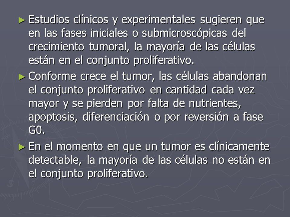 Estudios clínicos y experimentales sugieren que en las fases iniciales o submicroscópicas del crecimiento tumoral, la mayoría de las células están en