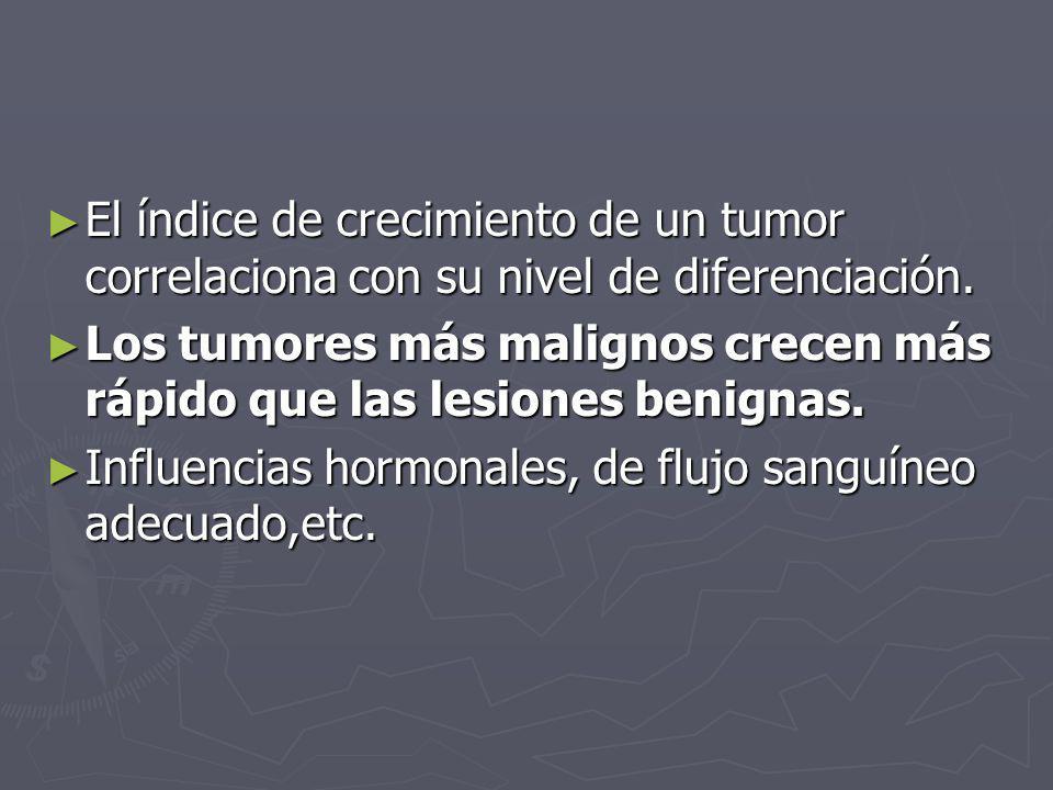 El índice de crecimiento de un tumor correlaciona con su nivel de diferenciación. El índice de crecimiento de un tumor correlaciona con su nivel de di