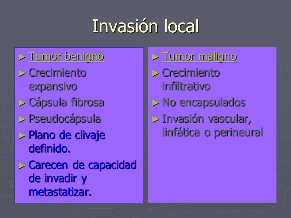 Invasión local Tumor benigno Tumor benigno Crecimiento expansivo Crecimiento expansivo Cápsula fibrosa Cápsula fibrosa Pseudocápsula Pseudocápsula Pla