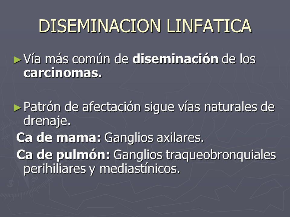 DISEMINACION LINFATICA Vía más común de diseminación de los carcinomas. Vía más común de diseminación de los carcinomas. Patrón de afectación sigue ví