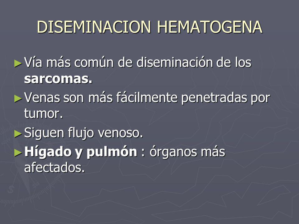 DISEMINACION HEMATOGENA Vía más común de diseminación de los sarcomas. Vía más común de diseminación de los sarcomas. Venas son más fácilmente penetra