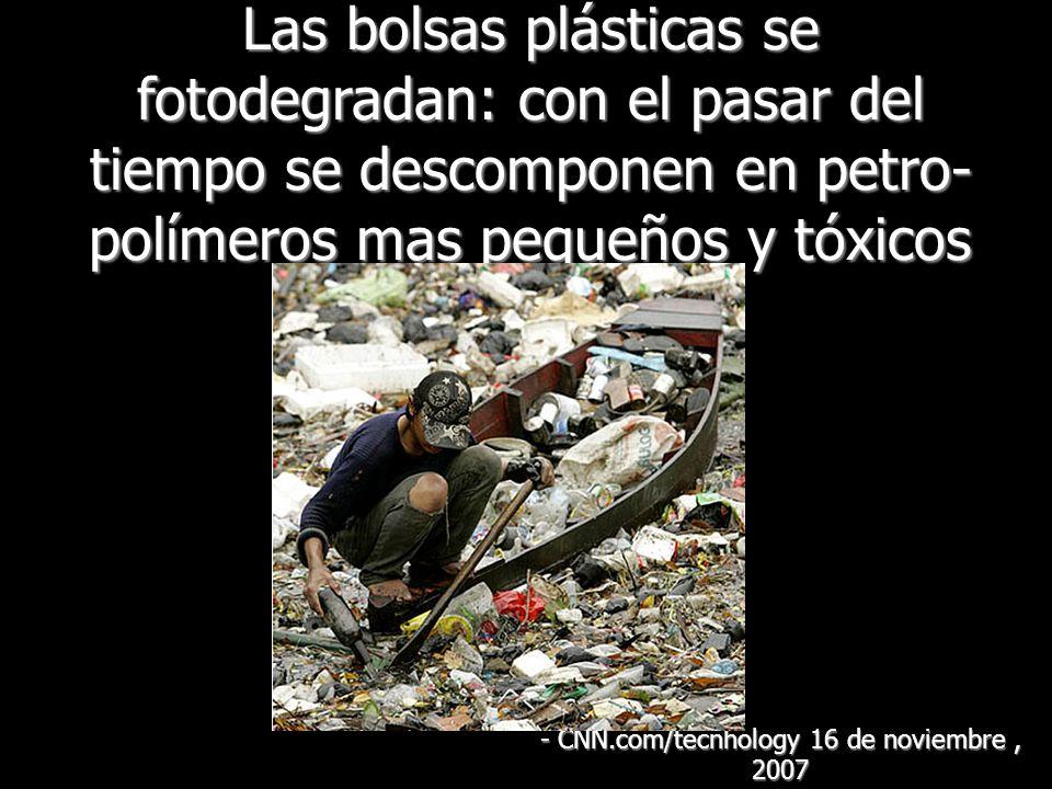 Las bolsas plásticas se fotodegradan: con el pasar del tiempo se descomponen en petro- polímeros mas pequeños y tóxicos - CNN.com/tecnhology 16 de noviembre, 2007