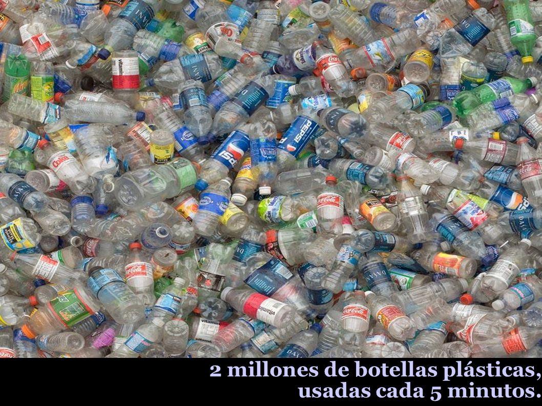 2 millones de botellas plásticas, usadas cada 5 minutos.