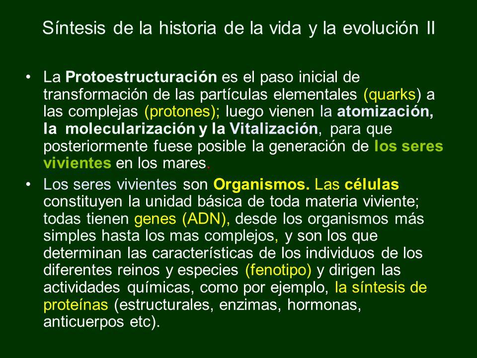 Síntesis de la historia de la vida y la evolución II La Protoestructuración es el paso inicial de transformación de las partículas elementales (quarks