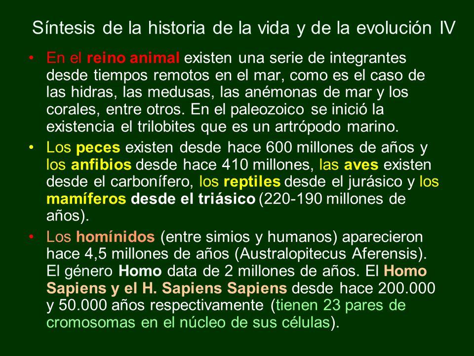 Etapas del desarrollo cultural del homo sapiens Paleolítico…… 200.000 – 9.000 años a C Neolítico……..