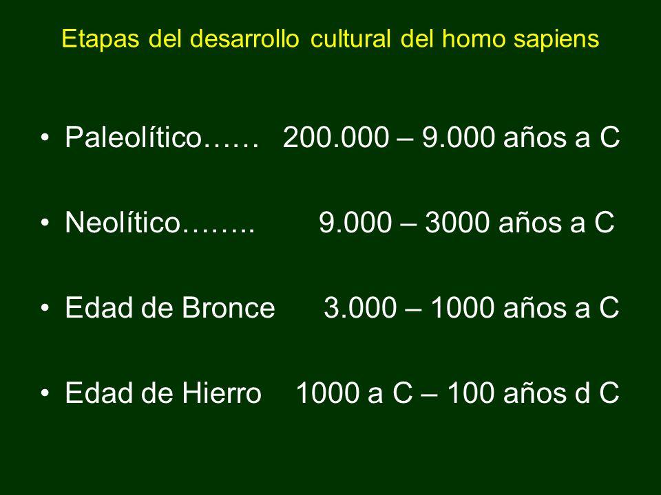 Etapas del desarrollo cultural del homo sapiens Paleolítico…… 200.000 – 9.000 años a C Neolítico…….. 9.000 – 3000 años a C Edad de Bronce 3.000 – 1000