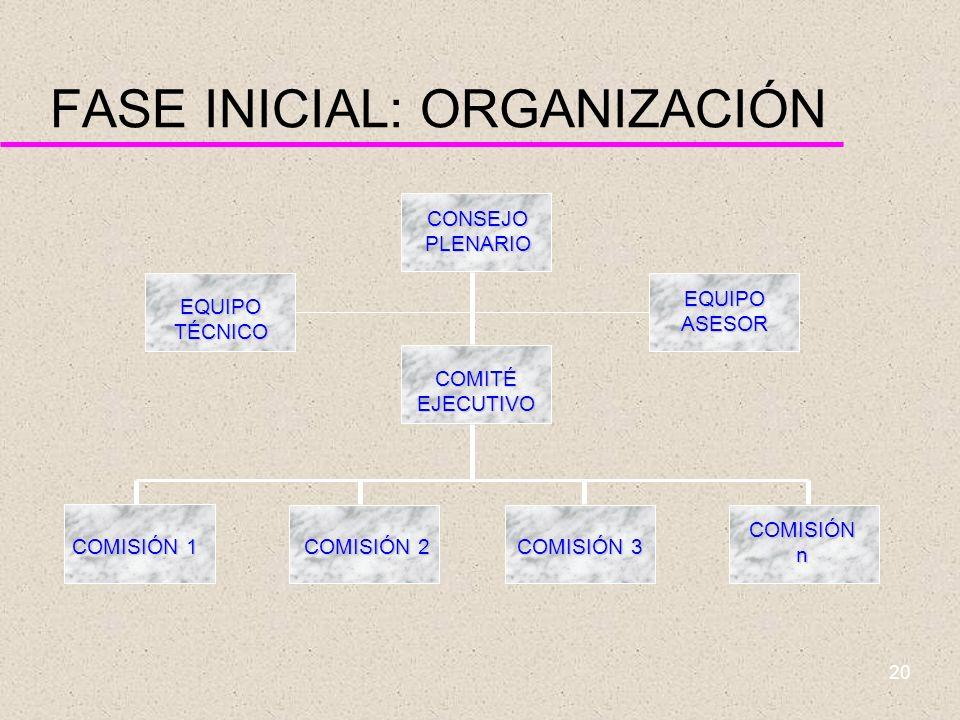 19 FASE INICIAL: ORGANIZACIÓN u Definir: –Los objetivos generales del plan –La estructura organizativa –El plan de comunicación –Los aspectos críticos