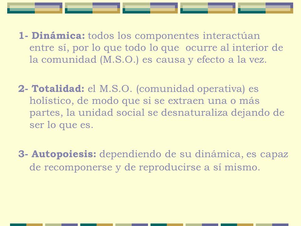 1- Dinámica: todos los componentes interactúan entre sí, por lo que todo lo que ocurre al interior de la comunidad (M.S.O.) es causa y efecto a la vez