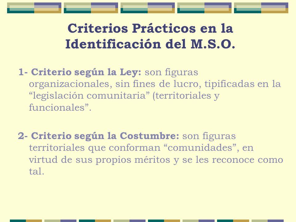 Criterios Prácticos en la Identificación del M.S.O. 1- Criterio según la Ley: son figuras organizacionales, sin fines de lucro, tipificadas en la legi