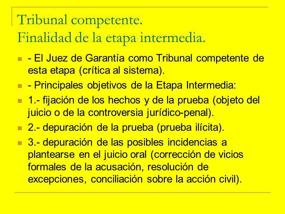 I.- Corrección de vicios formales, art.