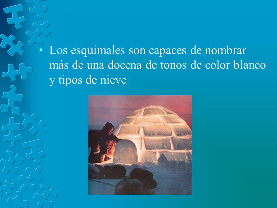 Los esquimales son capaces de nombrar más de una docena de tonos de color blanco y tipos de nieve