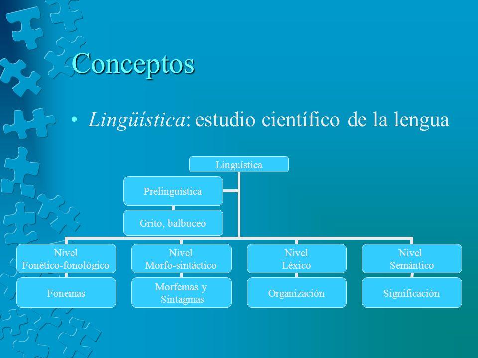 Conceptos Lingüística: estudio científico de la lengua Linguística Nivel Fonético- fonológico Fonemas Nivel Morfo-sintáctico Morfemas y Sintagmas Nive