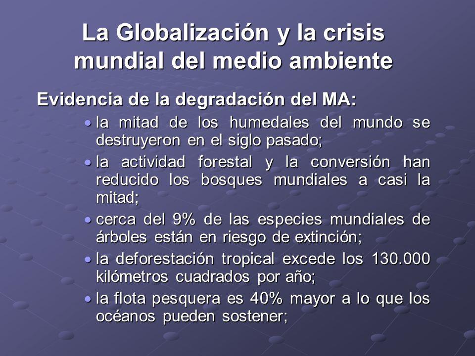 La Globalización y la crisis mundial del medio ambiente Evidencia de la degradación del MA: la mitad de los humedales del mundo se destruyeron en el s