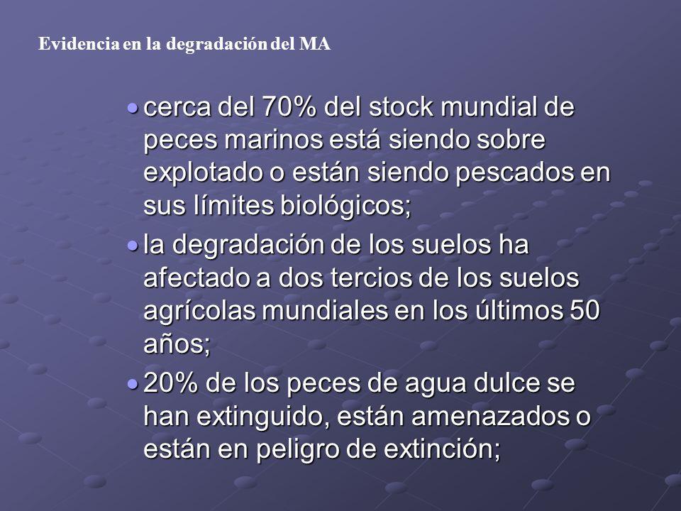cerca del 70% del stock mundial de peces marinos está siendo sobre explotado o están siendo pescados en sus límites biológicos; cerca del 70% del stoc
