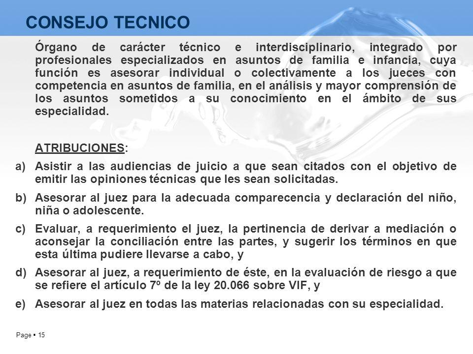 Page 15 Órgano de carácter técnico e interdisciplinario, integrado por profesionales especializados en asuntos de familia e infancia, cuya función es
