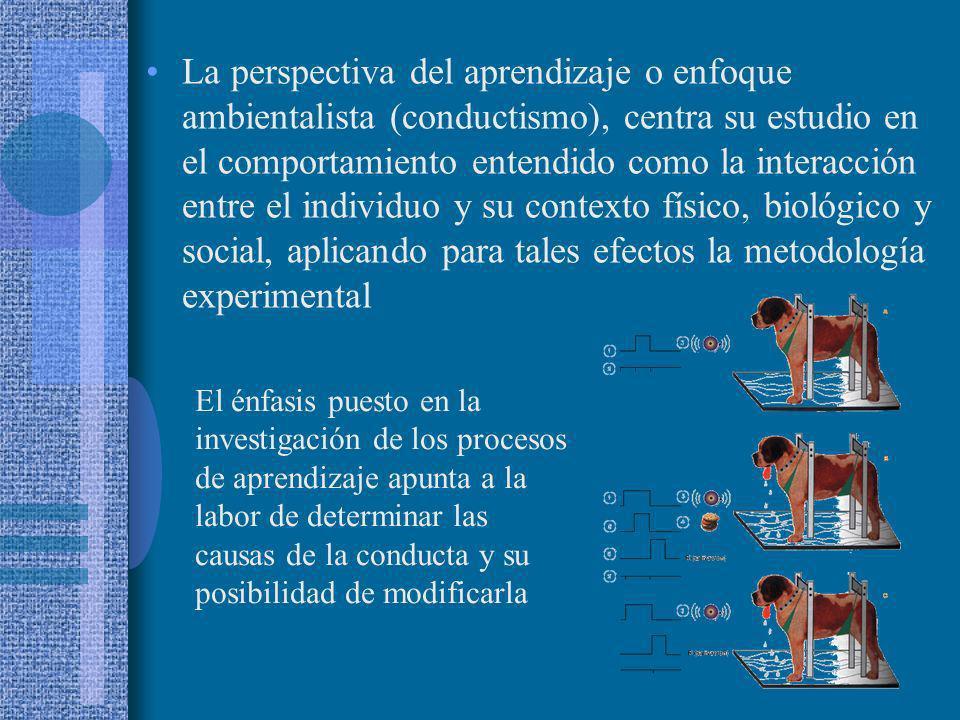 La perspectiva del aprendizaje o enfoque ambientalista (conductismo), centra su estudio en el comportamiento entendido como la interacción entre el in