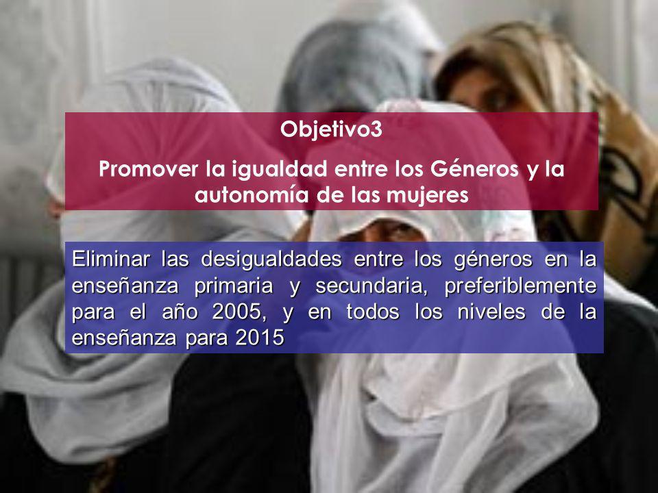 Objetivo3 Promover la igualdad entre los Géneros y la autonomía de las mujeres Eliminar las desigualdades entre los géneros en la enseñanza primaria y