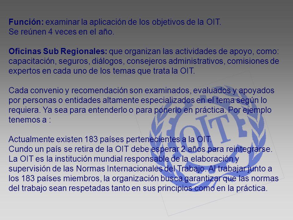 Función: examinar la aplicación de los objetivos de la OIT. Se reúnen 4 veces en el año. Oficinas Sub Regionales: que organizan las actividades de apo
