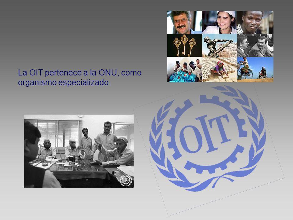 La OIT pertenece a la ONU, como organismo especializado.