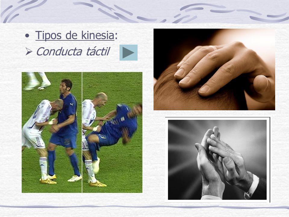 Tipos de kinesia: Conducta táctil