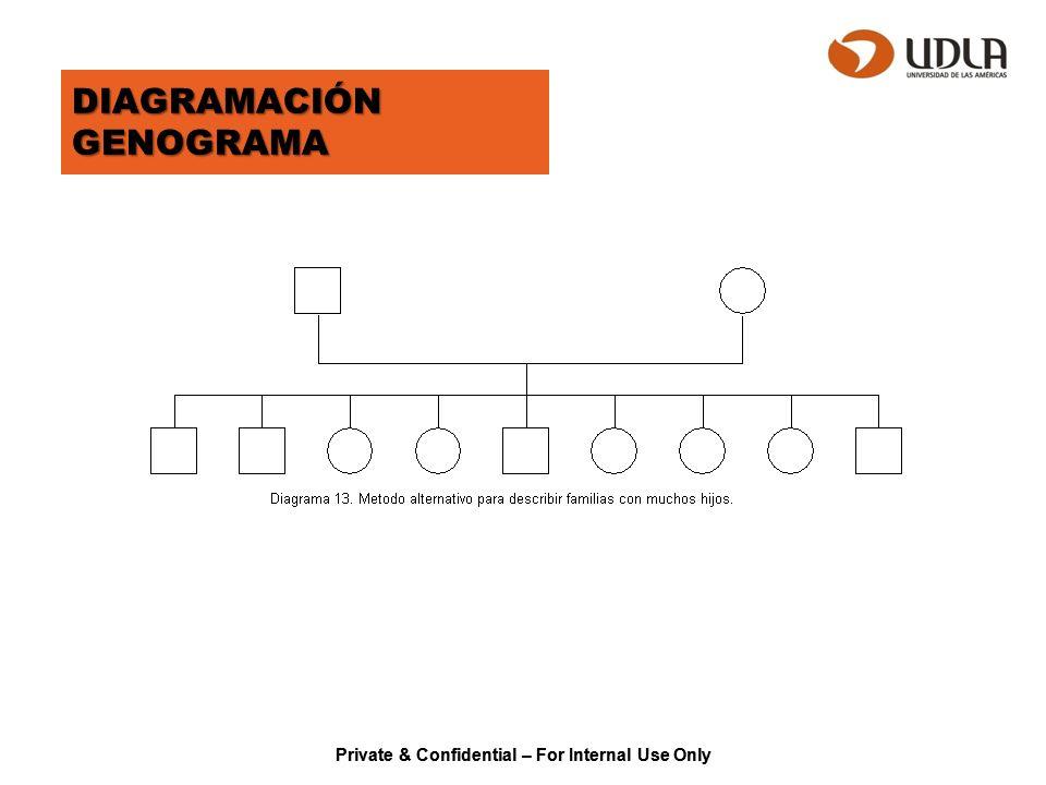 Private & Confidential – For Internal Use Only DIAGRAMACIÓN GENOGRAMA