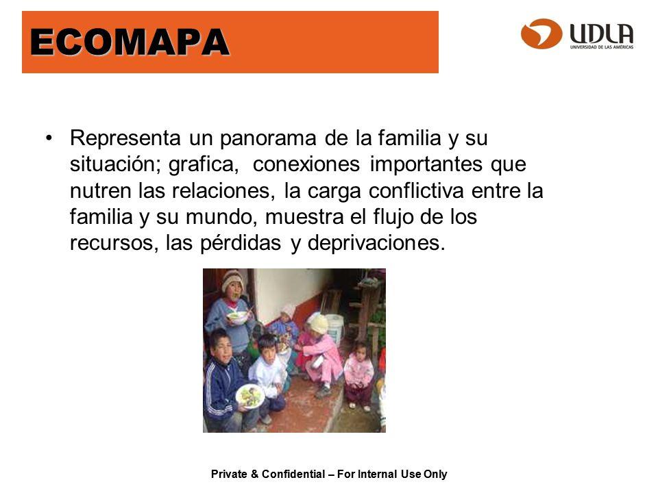 Private & Confidential – For Internal Use Only ECOMAPA Representa un panorama de la familia y su situación; grafica, conexiones importantes que nutren
