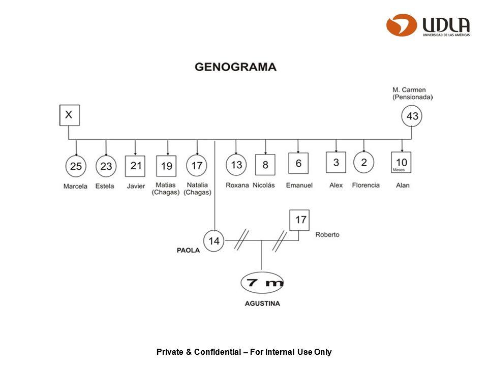 GENOGRAMA Crear un genograma supone 3 niveles: Trazado de la estructura familiar.