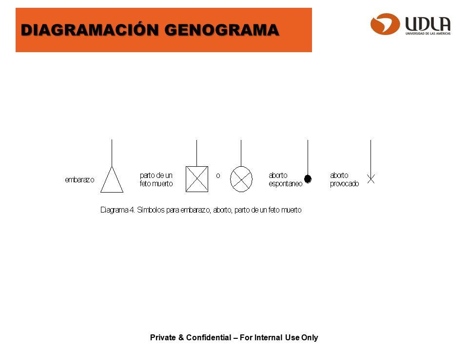 ECOMAPA El Ecomapa es un complemento del Genograma y una gran ayuda visual para la comprensión del entorno en que se desarrolla la vida de las familias a cargo.