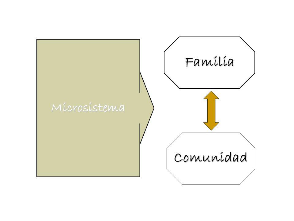 Microsistema Familia Comunidad