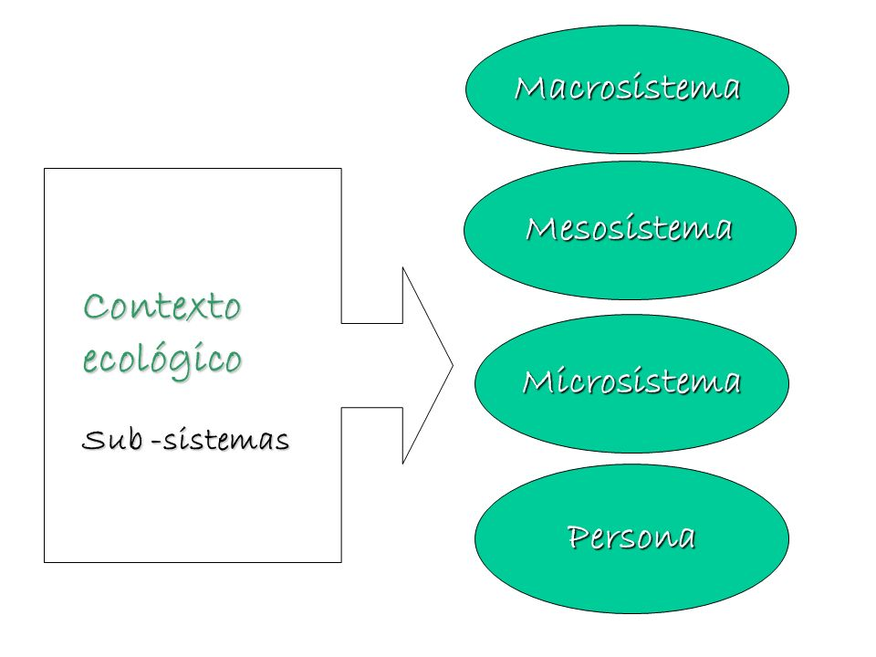 Cuatro niveles 1.Microsistema: corresponde al patrón de actividades, roles y relaciones interpesonales que la persona en desarrollo experimenta en un entorno determinado en el que participa.